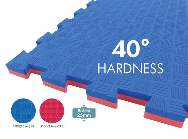 Taekwondo Flooring Mat SP2100(25mm)5S / SP2100(25mm)CRS Malaysia 2